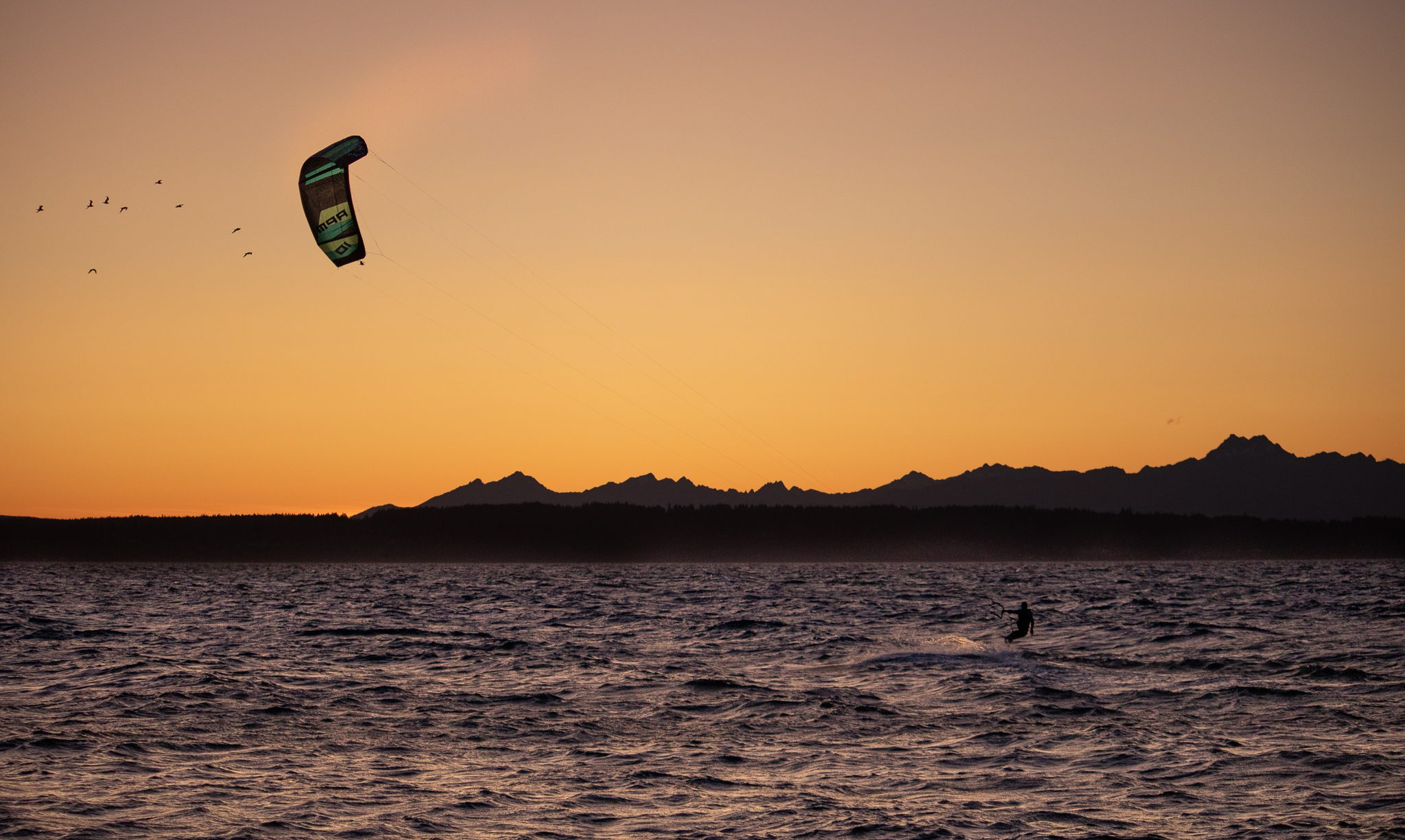 birds and kiteboarder at sunset